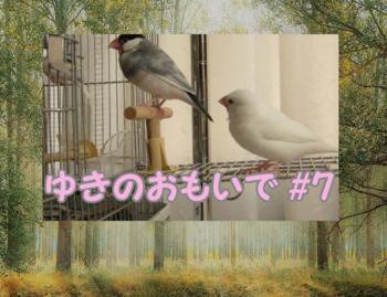 #122ゆき7_2.png