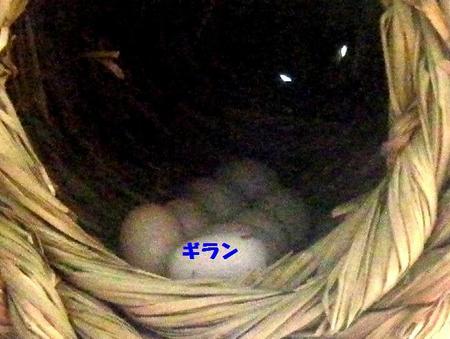 0220-1.JPG