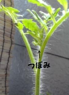 20130813124047.jpg