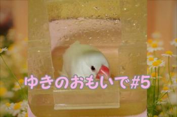 #110ゆきのおもいで_5.png