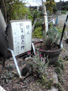 みぬま2.jpg